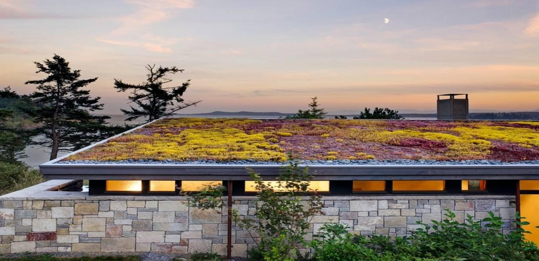 سقف مسطح سبز
